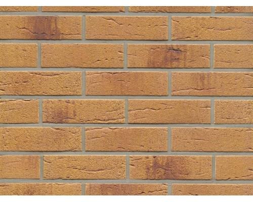 Клинкерная плитка Feldhaus Klinker R287NF amari rustico aubergine, NF9 240x71x9 мм