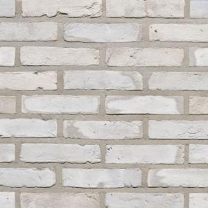 Клинкерный кирпич Vandersanden FB Rainbow Zilver, WF 207х98х50 мм